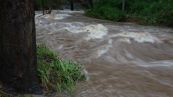 2013 Jan Aust Day flood CrossingP1040951_web