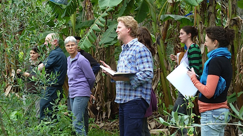 An outdoor class in the food forest