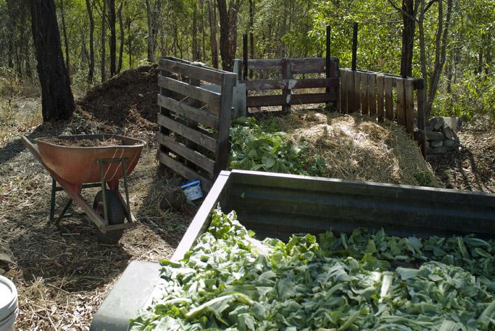 DSCF4687_compost-trailer-chip heap_small