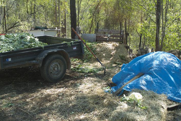 DSCF4688_compost-trailer-old heap_small