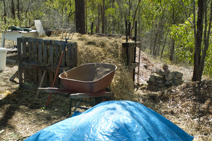 DSCF4692_compost-final heap_small