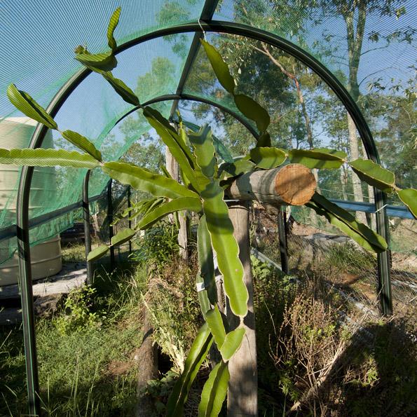 DSCF4472_120414 crop_small